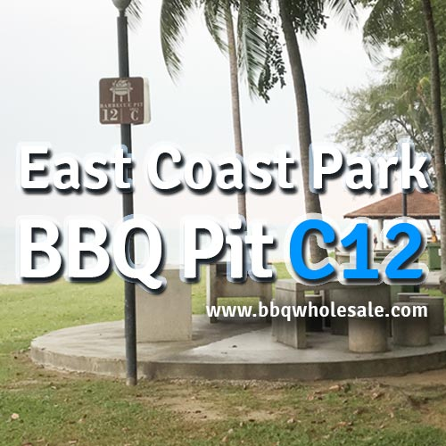 East-Coast-Park-Area-C-BBQ-Pit-C12