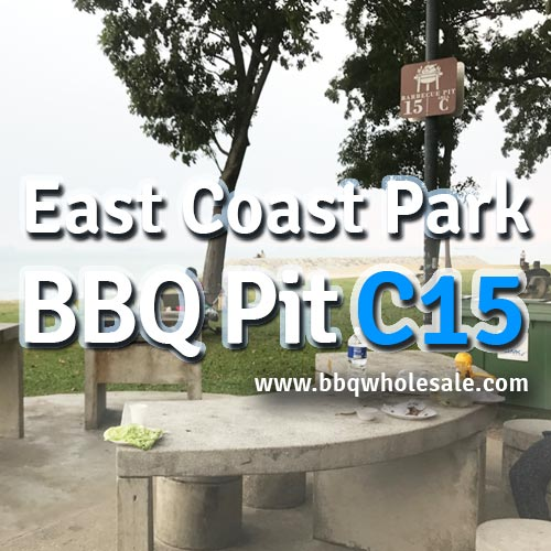East-Coast-Park-Area-C-BBQ-Pit-C15