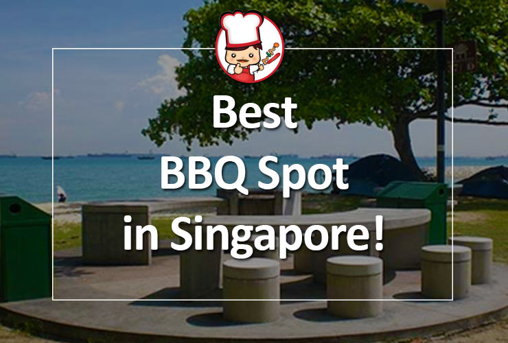 Best-BBQ-Spot-In-Singapore-Barbecue-Wholesale-Frankel-Barbecue