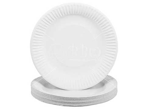 BBQ-Accessories-Disposable-Paper-Plate-BBQ-Wholesale-Singapore