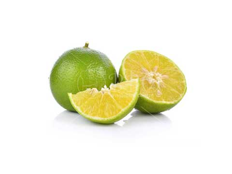 Singapore-Fresh-Lime-BBQ-Wholesale-Frankel