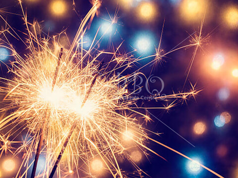 Sparklers-Sparkling-Celebration-BBQ-Wholesale-Frankel-Singapore