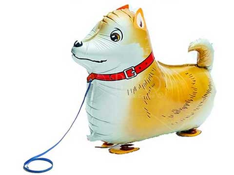 Walking-Pet-Dog-Balloon-Singapore-BBQ-Wholesale-Frankel